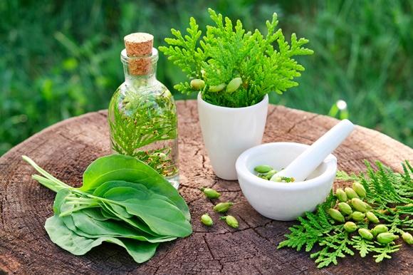 کنترل استرس با داروهای گیاهی
